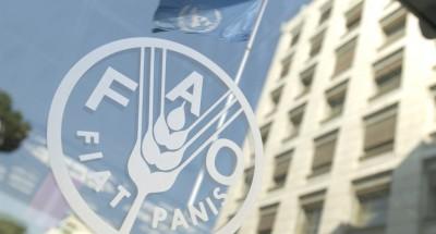 """""""فاو"""": اتفاق لتعزيز التعاون الغذائي بين الشرق الأدنى وشمال أفريقيا"""