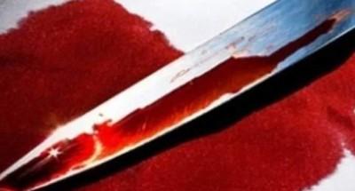 """""""يفصلان رأسها عن جسدها"""" أخوان  يقتلان شقيقتهما بمحافظة سوهاج"""