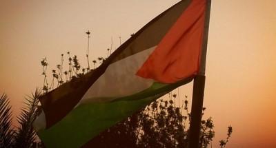 «فلسطين» تحذر المجتمع الدولي من خطورة المرحلة الحالية
