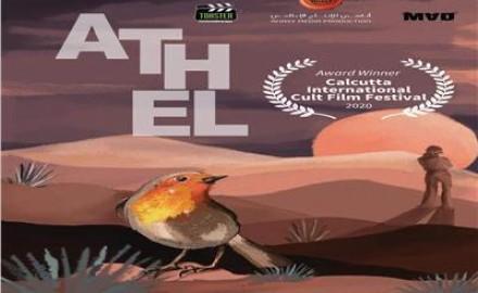 """""""حلا شيحة"""" في مهرجان العين السينمائ بالفيلم الوثائقي «أثل»"""