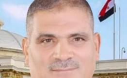 عبدالقوي: السيسي أكد على الثوابت المصرية في علاقاتها الخارجية ودعم مفهوم «الدولة الوطنية»