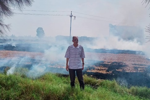 نائب رئيس مركز ومدينة دكرنس يقوم بتحرير محضر حرق قش الأرز بديمشلت